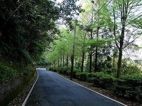 望幽谷旅游景点图片