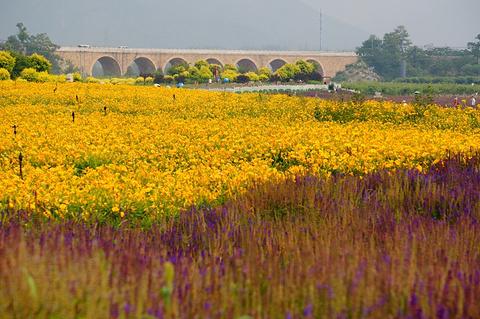 七孔桥的图片