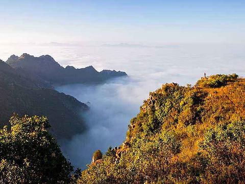 黄花山旅游景点图片