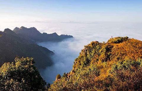 黄花山的图片