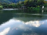 罗山大鱼池