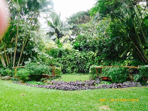 拉罗汤加岛旅游景点图片