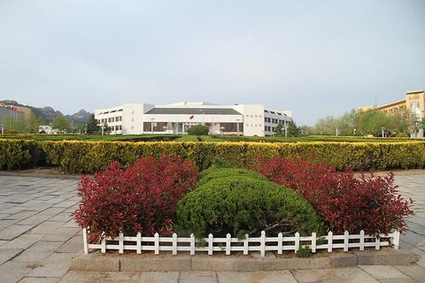 青岛大学(中心校区)