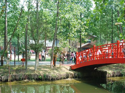 湿地公园旅游景点图片