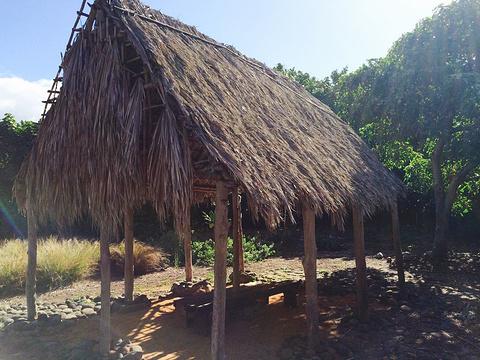 茂宜努伊植物园