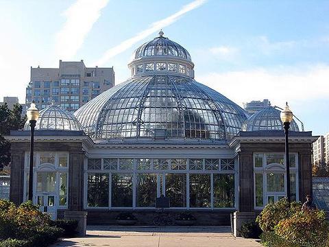 爱伦温室花园旅游景点图片