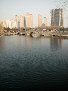 双龙湖公园的图片