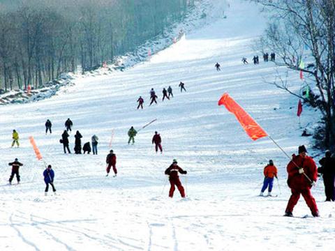 北极滑雪场