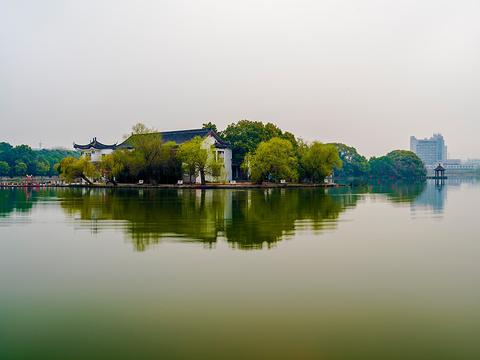 汀棠公园旅游景点图片