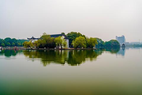 汀棠公园的图片