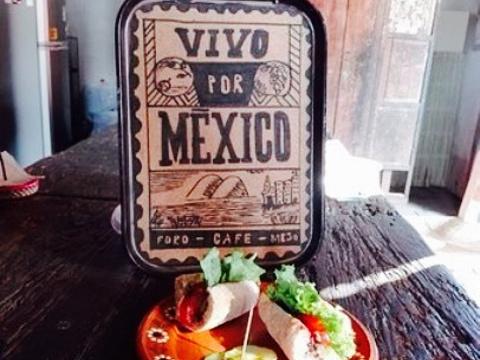 Vivo Por Mexico旅游景点图片