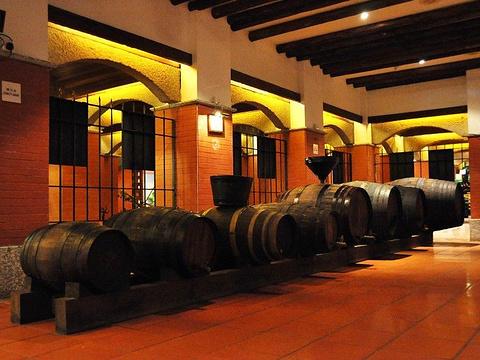 葡萄酒博物馆旅游景点图片