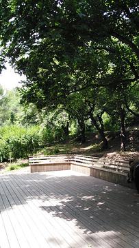 北山公园的图片