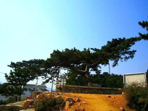 劲松园旅游景点图片