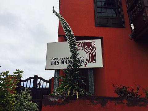 Casa Museo del Vino Las Manchas旅游景点图片