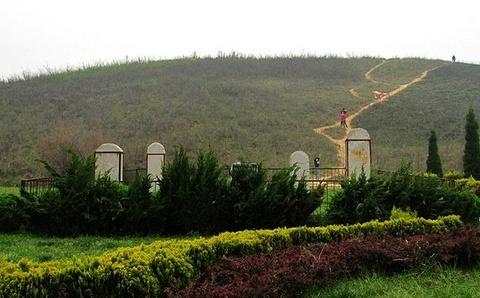 咸嘉湖唐墓