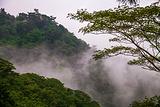 六甲高山植物园