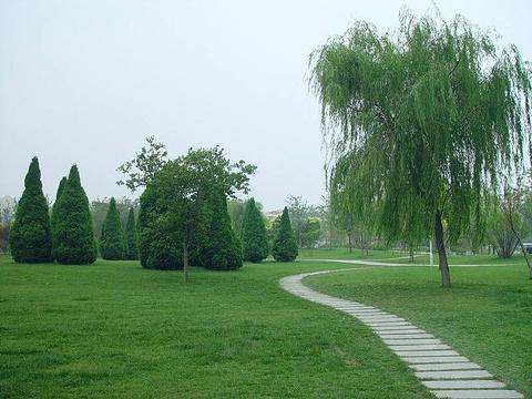 河东公园旅游景点图片