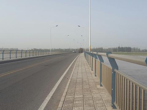 阿拉尔塔里木河大桥旅游景点图片