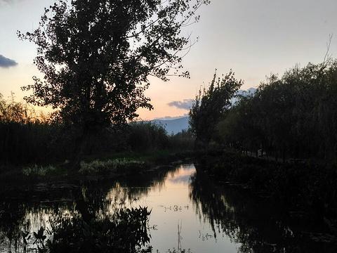 塭子头红树林生态保护区旅游景点图片