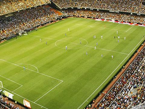 梅斯塔利亚球场旅游景点图片