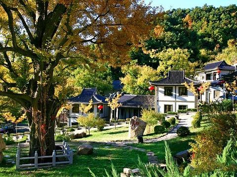 禅林寺风景区旅游景点图片
