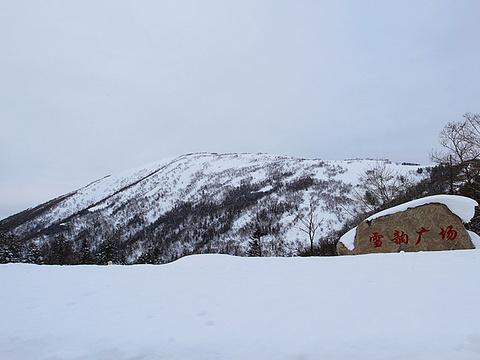大秃顶子山旅游景点图片
