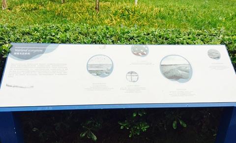 三圣乡白鹭湾湿地公园自助烧烤(三圣乡农家乐)