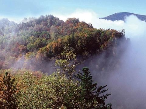 街津山国家森林公园旅游景点图片