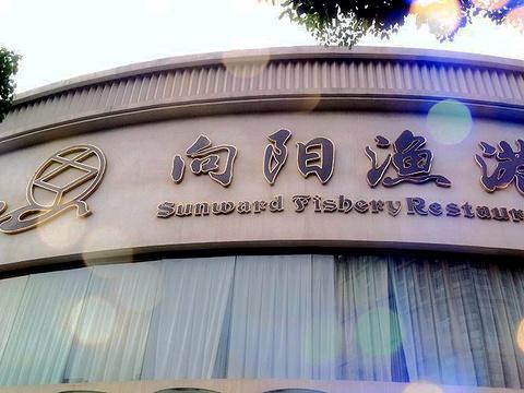 向阳渔港(彩虹店)旅游景点图片
