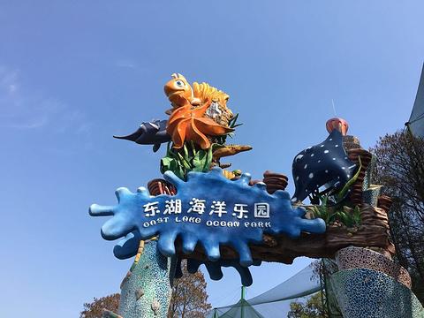 武汉东湖海洋世界旅游景点图片
