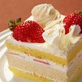 生日蛋糕店