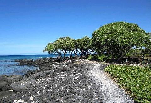 维客乐-夏威夷岛旅游景点图片