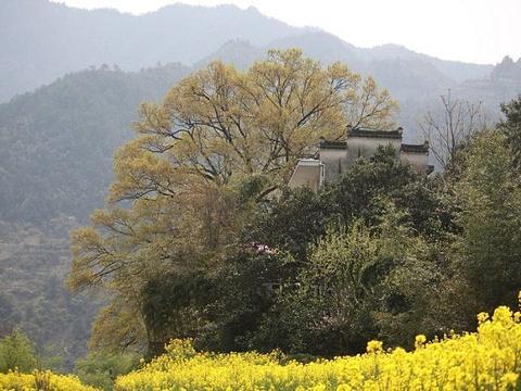 湖山村旅游景点图片