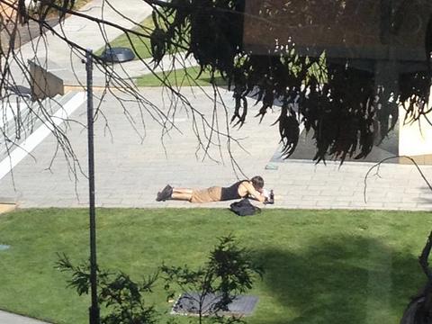 塔斯马尼亚大学旅游景点图片