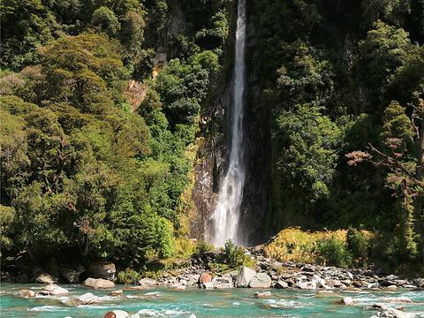 Fantail Falls旅游景点图片