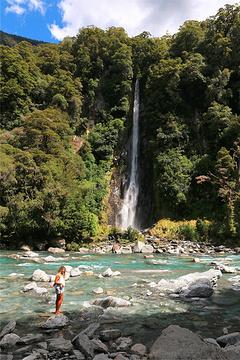 Fantail Falls的图片