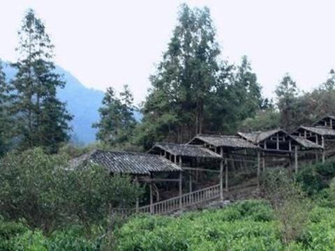 龙窑旅游景点图片