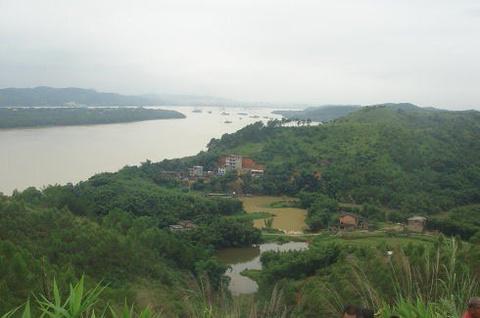 禤洲岛的图片
