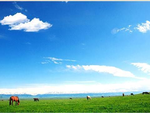 巴勒克苏草原旅游景点图片