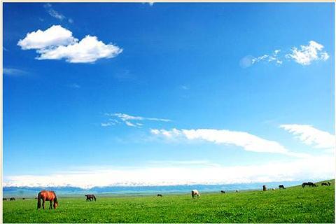 巴勒克苏草原