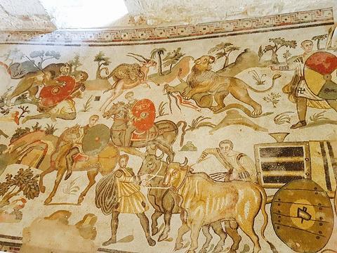 卡萨尔的罗马别墅的图片