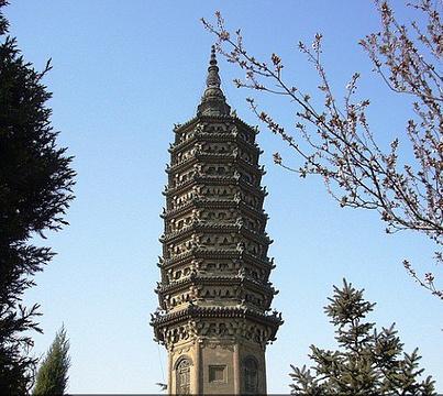 临济寺澄灵塔的图片