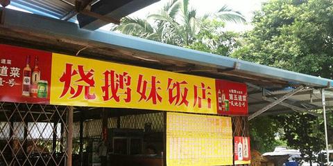烧鹅妹饭店