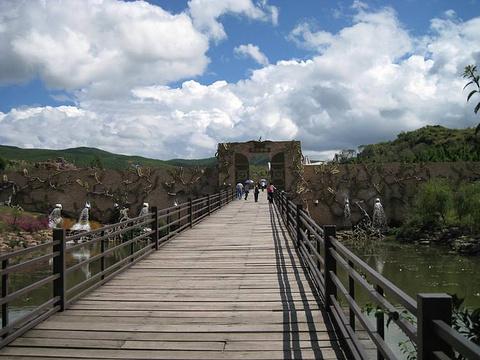侏罗纪栈道的图片