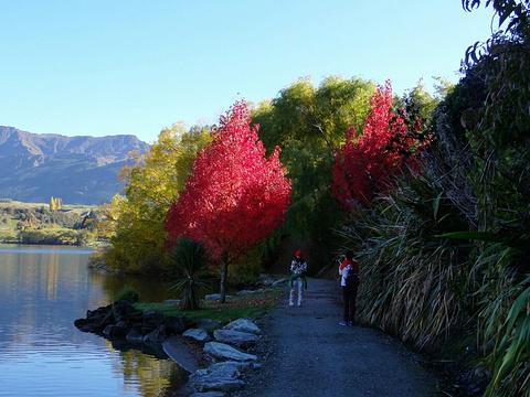 Lake Hayes Walkway旅游景点图片