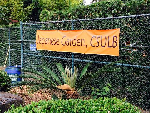 Earl Burns Miller Japanese Garden旅游景点图片