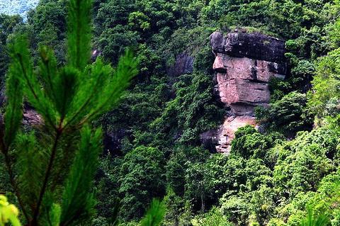 紫林山国家森林公园