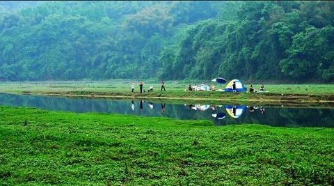 长滩湖的图片