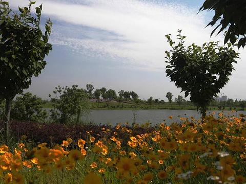 三角嘴杜鹃湿地公园旅游景点图片